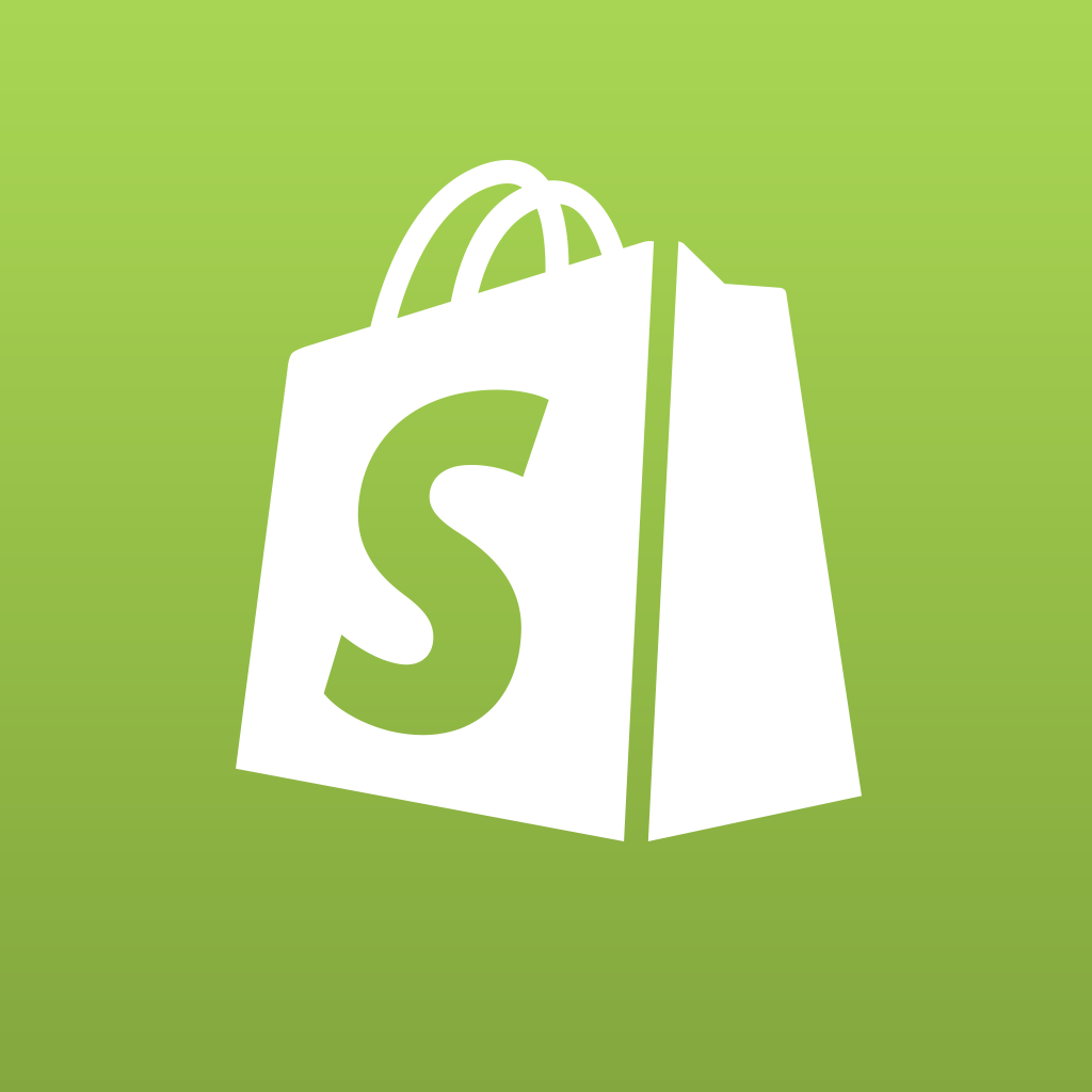 shopify the basics like new media